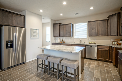 Kitchen - IPA (Mesa Del Sol)