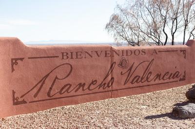 View From Rancho Valencia- Rancho Valencia